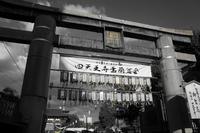 四天王寺盂蘭盆会 - G-SHOT photo by MR.G