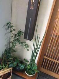 代々木八幡の和食屋さん - 来客手帖~ときどき薬膳