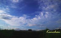 秋のような空も - カンちゃんの写真いろいろ