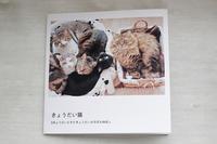 初めてのフォトブック  - きょうだい猫と仲良し暮らし