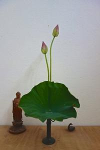 蓮を生ける - g's style day by day ー京都嵐山から、季節を楽しむ日々をお届けしますー