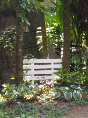 庭を整えて、、、 -