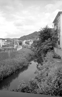 河口域周辺(その4) - そぞろ歩きの記憶