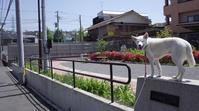 Vol.1222 山王森第二公園 - 小太郎の白っぽい世界