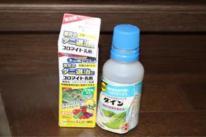 ハダニを消毒 - my small garden~sugar plum~