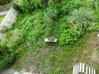 庭の草むしり② - はっぴ~かふぇ