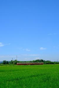 たとえ同じ日の撮影であっても…。 小湊鐵道 - My B Side Life season2