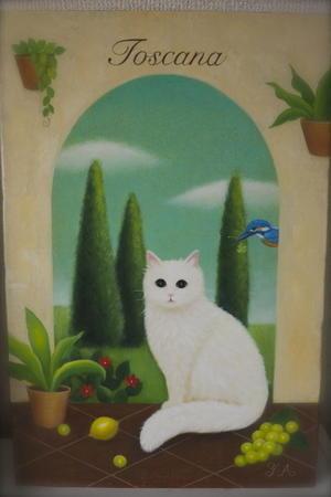 トスカーナの白猫 -