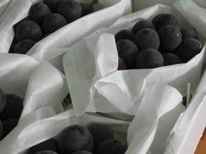 「個性的すぎるマニキュアフィンガー」 - 東浦の葡萄屋  石田農園の作業日記
