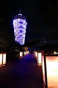 幻想的な夜の江の島散策 - 湘南発〜ドラマチックに