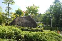 シンガポール Chestnut Nature Parkを歩く - 旅の備忘録