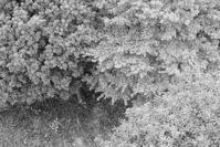 11082017 - 音・岩・光