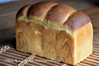 角食のなれの果て その2 - 森の中でパンを楽しむ
