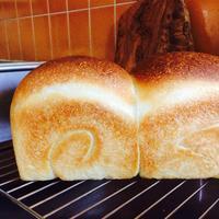 柿渋塗り - 八女市の蔵でパンを焼く