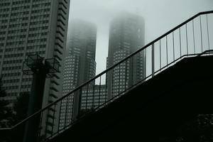 Snap No219 - 東京Shy 写歩く