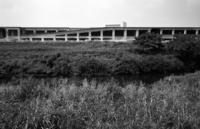 8月の河畔 - そぞろ歩きの記憶