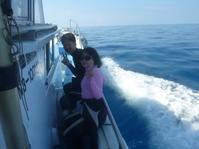 ビーチとボートでダイビング ~沖縄本島南部ガイド付きダイビング(ファンダイビング)~ - 沖縄本島最南端・糸満の水中世界をご案内!「海の遊び処 なかゆくい」