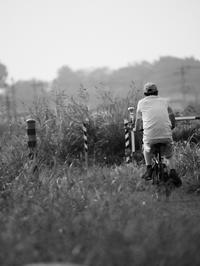 サイクリングロード - 節操のない写真館
