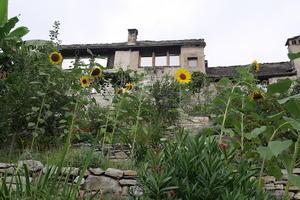 屋根の修理とコース開始 - La casa d'arte sul granito