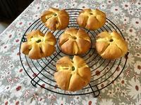 クリチのパンプキンぱんと今朝のワンプレート - カフェ気分なパン教室  ローズのマリ