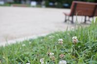 新しくなった春日井市細木公園 - 岳の父ちゃんの PhotoBlog