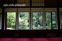 京都 旧三井家下鴨別邸 - mglss studio photography
