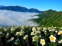 2017.08.11-13: 後立山連峰(針ノ木岳→爺ヶ岳) - Twenty Cross Blog