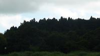今日も変わりやすい天気でした - 千葉県いすみ環境と文化のさとセンター