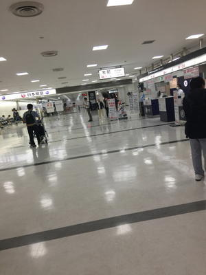 無事に一時帰国しました - ハーバードで奮闘中、日本人救急医ブログ
