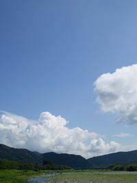くつきの森で、薪ネットとBBQ・・・飛べる日を夢見る - 朽木小川より 「itiのデジカメ日記」 高島市の奥山・針畑郷からフォトエッセイ