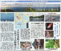上関原発予定地は今 豊かな海の生き物たち /こちら原発取材班 東京新聞 - 瀬戸の風