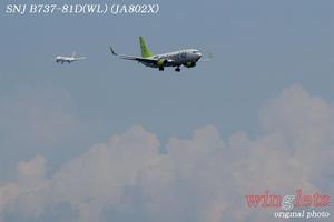 '17年 京浜島・つばさ公園レポート ・・・SNJ/JA802X - winglets