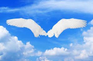 スピリチュアルカウンセラー ホワイトクロウのワンネス日記 ☆解いていって、クラリティー(明晰さ)☆ - スピリチュアル ブログ ホワイトクロウ