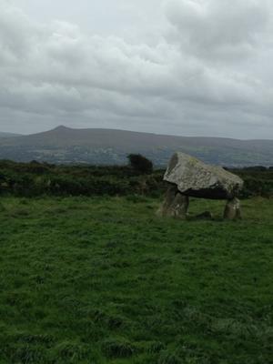決心したら。。。 - イギリス ウェールズの自然なくらし