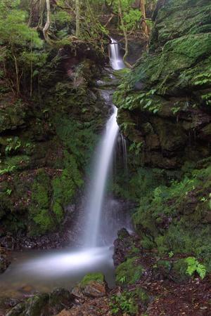 産の滝(金蔵寺) -