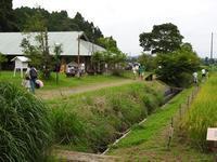 夏の落とし物・秋の気配 - 千葉県いすみ環境と文化のさとセンター