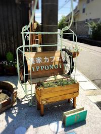 農家カフェ IPPONGI - プリンセスシンデレラ