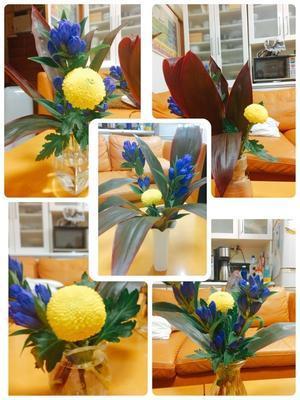 お花の世界を楽しむ   ?tama's cafe<花楽> - 生きる意味の、育て方☆もんもく日記2