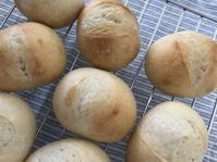 パン焼きと近場ランチ - パンと猫