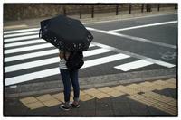 三条通から将軍塚・蹴上へ 11 - Hare's Photolog