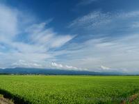 福島潟界隈 - デジタルで見ていた風景