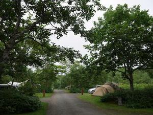 北海道虹別キャンプ場(その1) - 美術と自然と教育と
