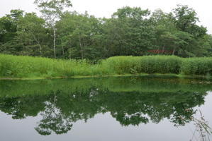 北海道 虹別キャンプ場 (その2) - 美術と自然と教育と