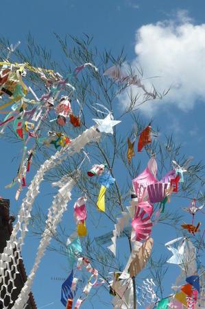 岡野直樹の俳句ブログ