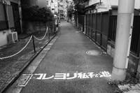 コレヨリ私有地 - Photo & Shot