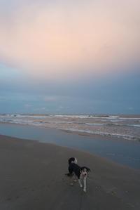 東の空の夕焼け。 - 東に向かえば海がある