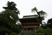 志波彦神社・鹽竈神社 - Buono Buono!