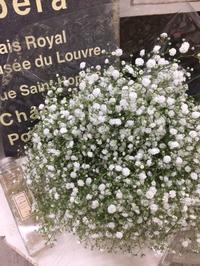 カスミ草の花束 - *karenのかたりごと*