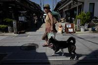 真夏の散歩道 - Wayside Photos  ☆道端ふぉと☆