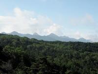 坪庭から縞枯山〜その1 - コーヒー党の野鳥と自然 パート2